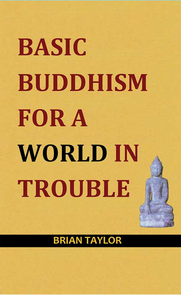 Basic-Buddhism-world-in-troubl
